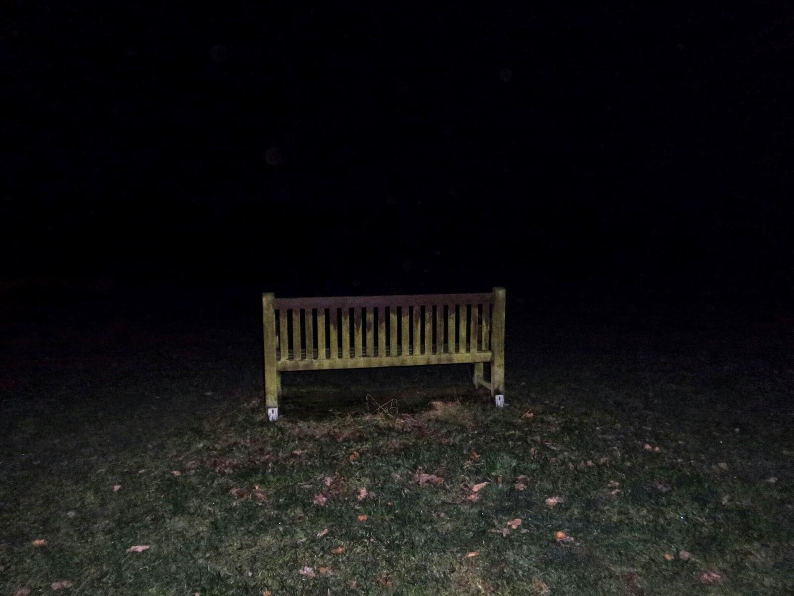 Bench in the Dark