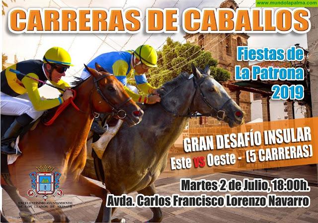 Los Llanos se prepara para celebrar hoy las tradicionales carreras de caballos de la Patrona
