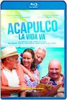 Acapulco La Vida Va (2013) HD 720p Latino