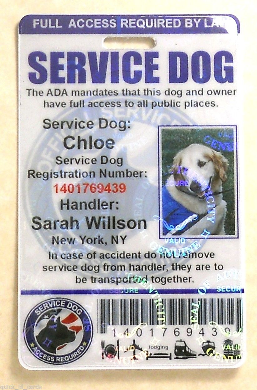 Ability chicago info blog fake service animal epidemic example of fake service dog id 1betcityfo Gallery