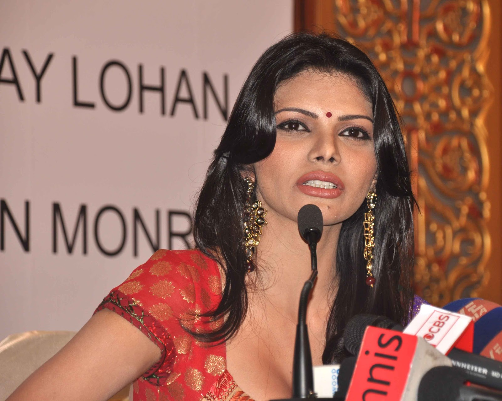 High Quality Bollywood Celebrity Pictures Sherlyn Chopra -1076