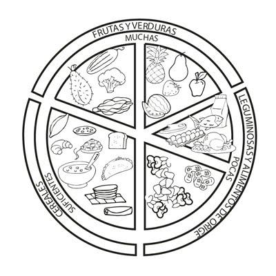 Dibujos Del Plato Del Buen Comer Imágenes Del Plato Del