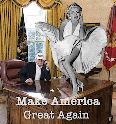 MAKE AMERICA GREAT AGIAN