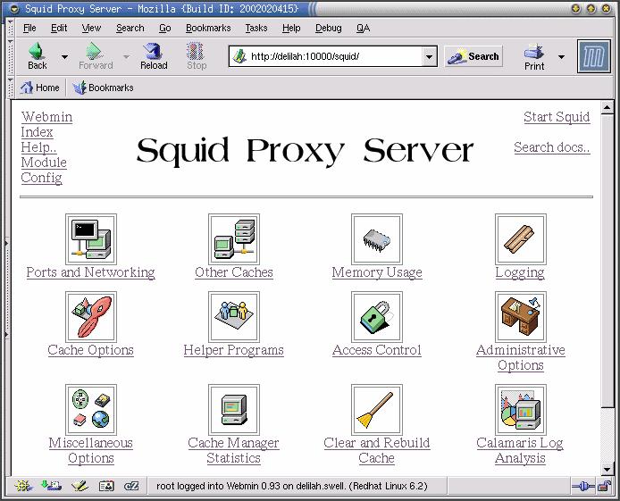 Squid windows