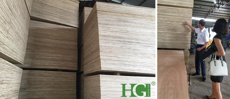 List of Plywood Companies in Vietnam