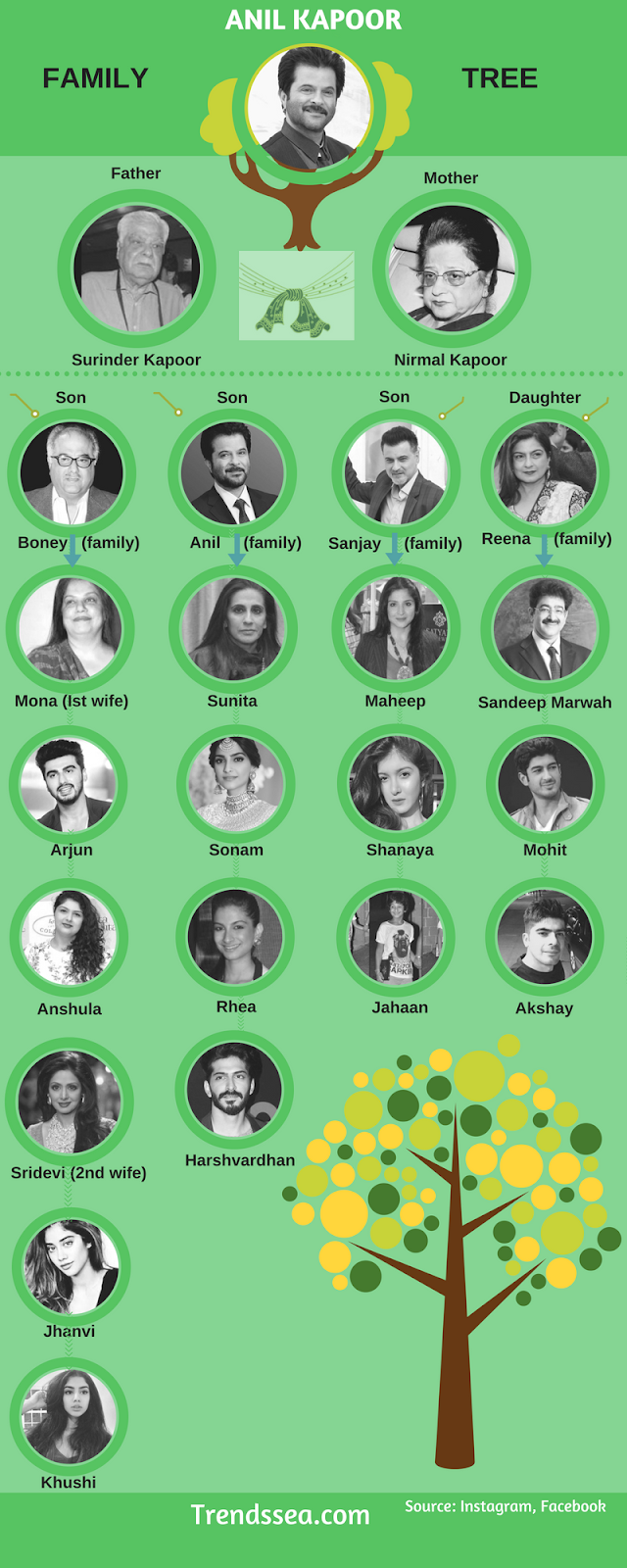Anil Kapoor Family Tree Infographic