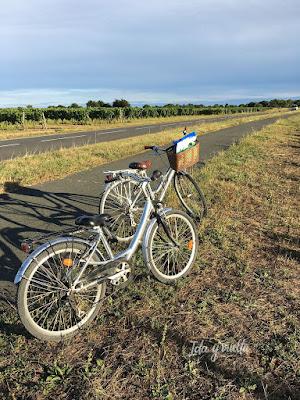 Ruta Oeste Francia bicicletas
