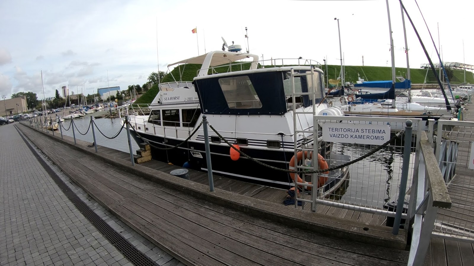 Развлекательная яхта Sea Horse - морская лошадь