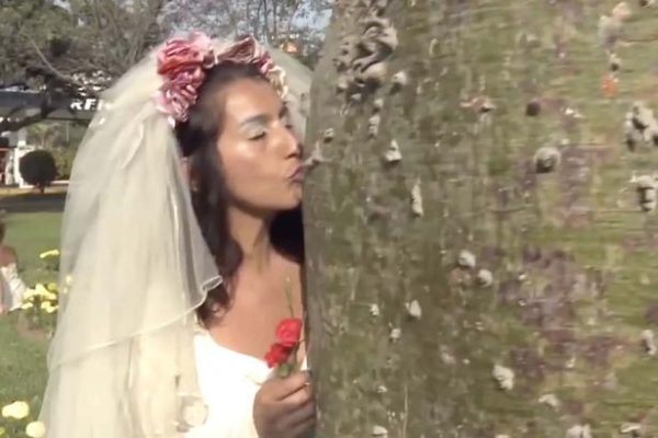 Image result for Young brides marry trees in bizarre mass wedding officiated by a 'priest'