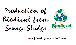 Production of Biodiesel from Sewage Sludge