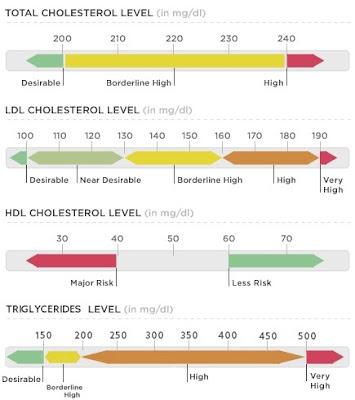 Patokan pengukuran kolesterol tinggi