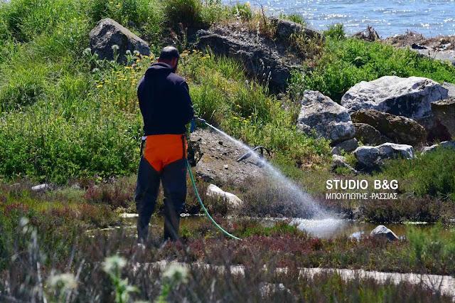 Αδιάκοπη η καταπολέμηση των κουνουπιών στο Δήμο Ναυπλιέων