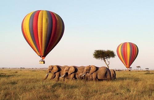 Kenya Budget Safaris