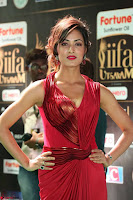 Videesha in Spicy Floor Length Red Sleeveless Gown at IIFA Utsavam Awards 2017  Day 2  Exclusive 17.JPG