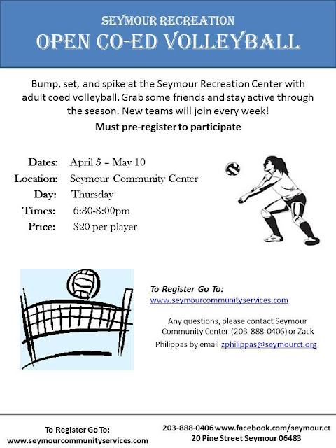Seymour Recreation offers coed volleyball starting in April