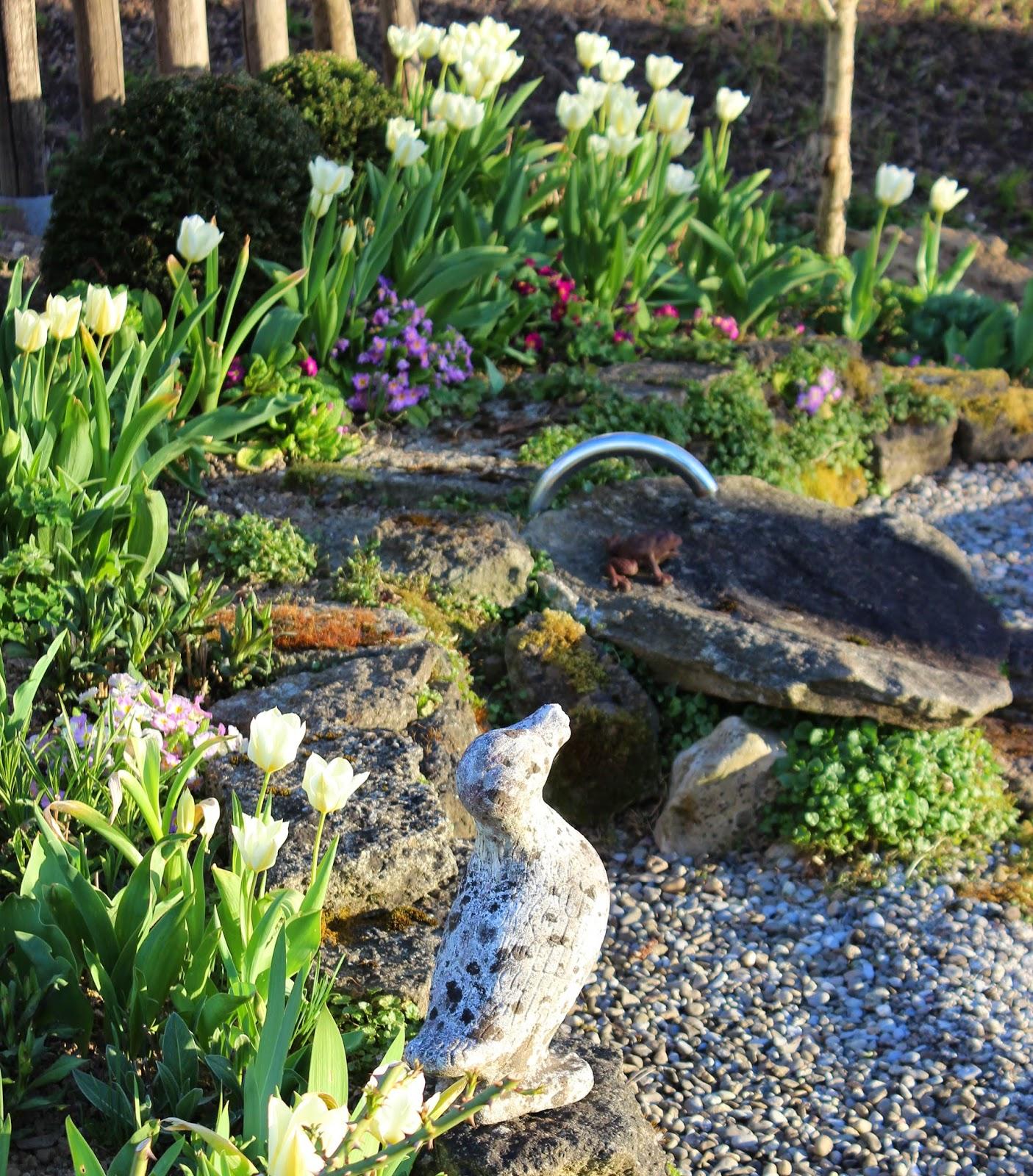 landidylle wo kommen bloss all die weissen tulpen her. Black Bedroom Furniture Sets. Home Design Ideas