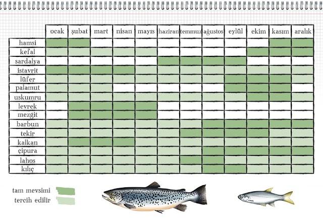 Hangi Balık Hangi Mevsimde Tutulur?