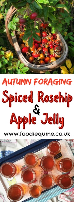 www.foodiequine.co.uk Preserve the taste of Summer into Autumn with a recipe for Spiced Apple and Rosehip Jelly. Nothing tastes better than free foraged food from the hedgerows.