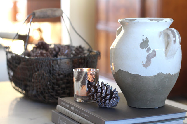 living-room-design-winter-coffee-table-pinecones-basket