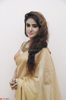 Sony Charistha in Lovely Brown Saree and Choli Spicy Pics ~  Exclusive 15.JPG