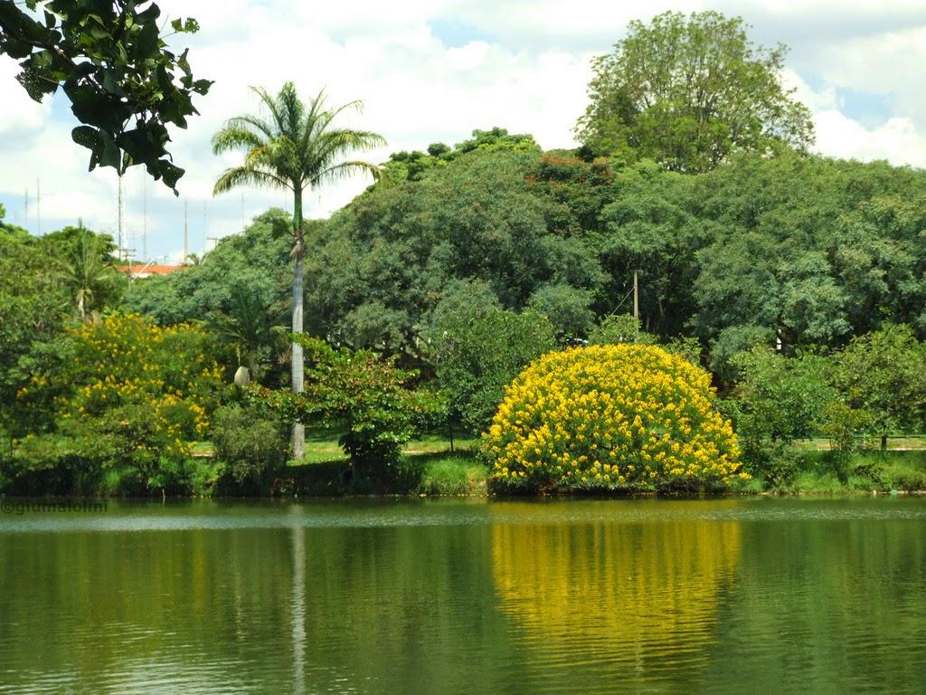 Parque Taquaral Campinas