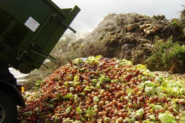 Residuos agroindustriales