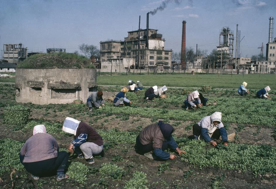 Amazing Color Photographs Of Daily Life In China In The