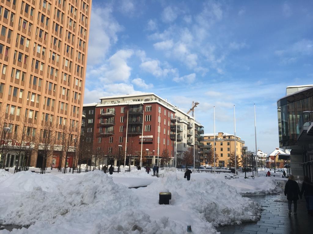 Cornucopia   Snöfall i Stockholm - du kan aldrig gissa vad som hände sen  51478ff15cf94