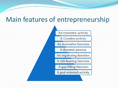 Key features of digital entrepreneur