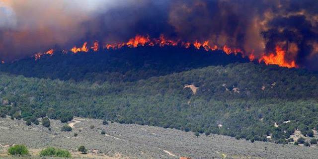 kebakaran-gunung-slamet-jawa-tengah