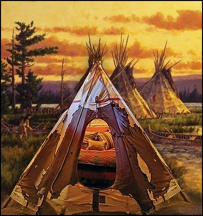 wolf theme bedrooms - Santa Fe style - wolf bedding - Tipis, Tepees, Teepees - Decal sticker wolf - wolf wall mural decals - birch tree branches - cactus decor