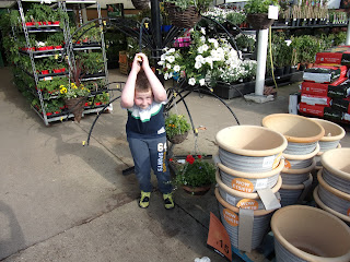 plant pots and flowers in b&q portsmouth