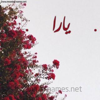 صور وخلفيات مكتوب عليها اسم يارا