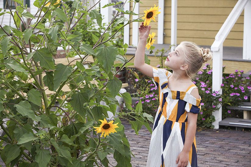 Little girl looking at a sunflower