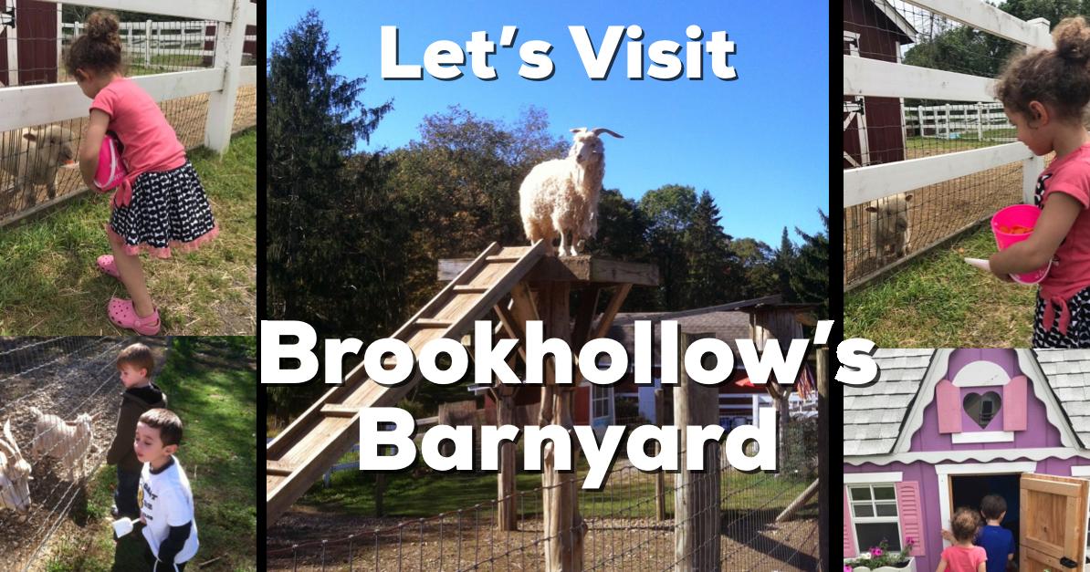 Let's Visit Brookhollow's Barnyard in Boonton Township, NJ