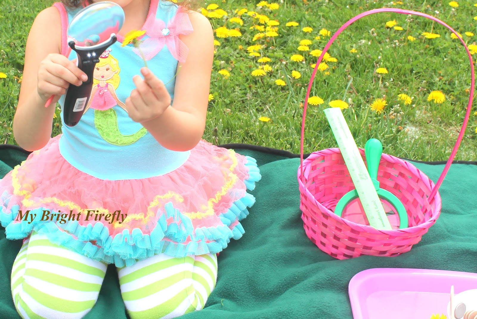 My Bright Firefly: Dandelion Art Project for Kids