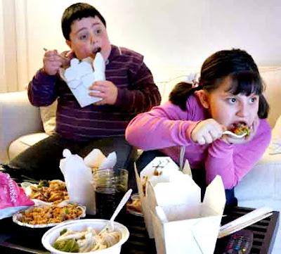 Obesidad herencia malos hábitos vida