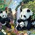 Samo 2% ljudi vidi 12 pandi na ovoj slici! Da li ste među njima?