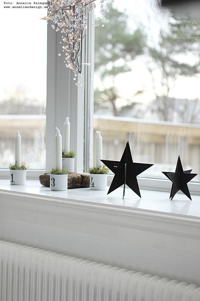 anneliesdesign. webbutik, webshop, nätbutik, nätbutiker, nettbutikk, nettbutikker, adventsljus, ljusstakar, advent, stjärna, stjärnor, Oohh, jul, julpynt, julen 2016, fönster, vitt, svart, svart och vitt, svartvit, svartvita, stilrent, stilrena,
