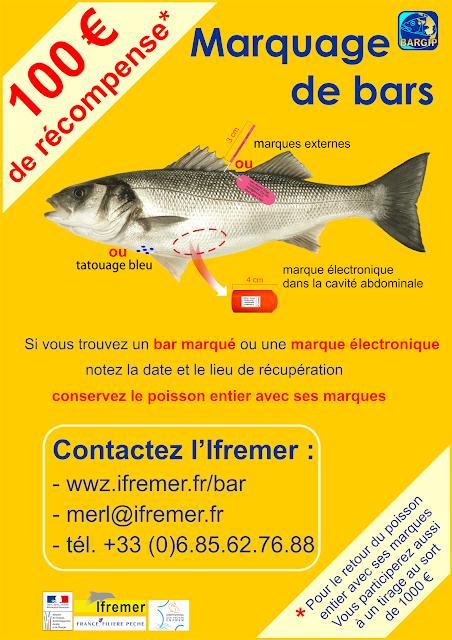 http://wwz.ifremer.fr/bar/Marquages