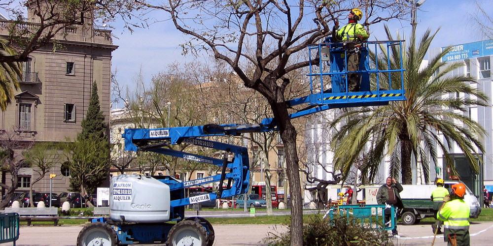 Un adecuado control público facilita la creación de 80 nuevos empleos en Zaragoza