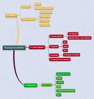 La nutrición (Mapa mental)