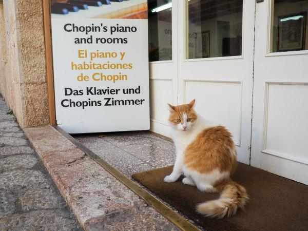 valldemossa chopin museum