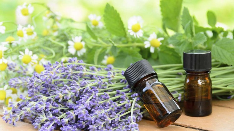 Aromatherapy-Using Essential Oils In Your Daily Life - Udemy Course