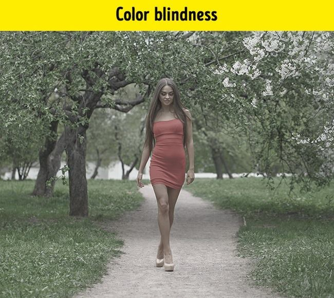 There are several different forms of color blindness. The most common form is deuteranomaly, where all colors lose intensity. Especially green and red.