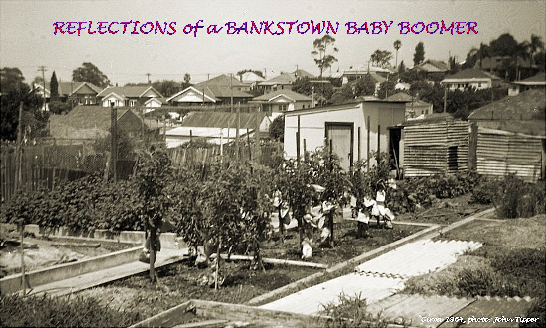 REFLECTIONS of a BANKSTOWN BABY BOOMER
