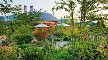 Horatio's Garden. Terapia en el jardín