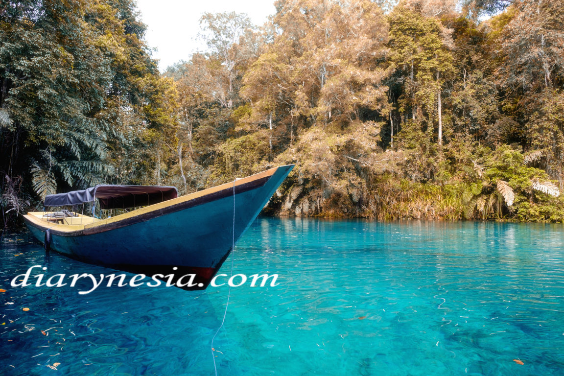 labuan cermin lake located in berau, crystal clear lake in berau, best time to visit labuan cermin, diarynesia