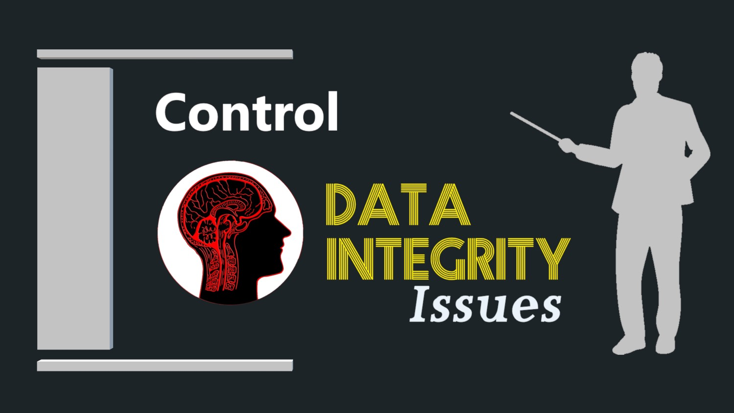 Data-Integrity-Issues