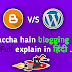 Blogger Vs WordPress : Which is Better in Hindi